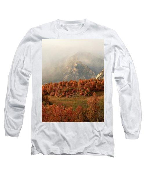 Cascading Fall Long Sleeve T-Shirt