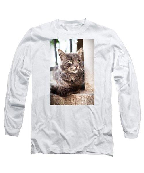 Cat #2480 Long Sleeve T-Shirt