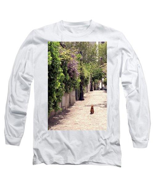 Cat On Cobblestone Long Sleeve T-Shirt