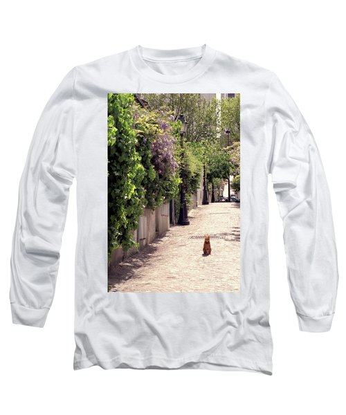 Cat On Cobblestone Long Sleeve T-Shirt