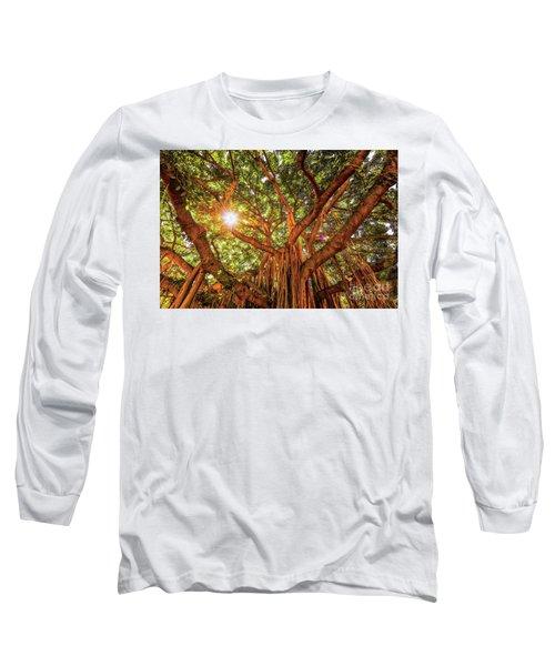 Catch A Sunbeam Under The Banyan Tree Long Sleeve T-Shirt