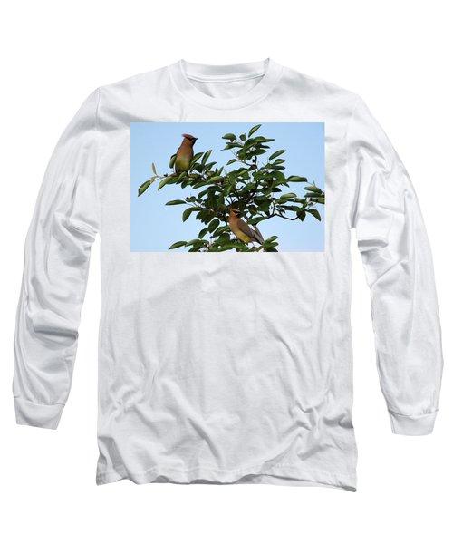 Cedar Waxwing Pair Long Sleeve T-Shirt