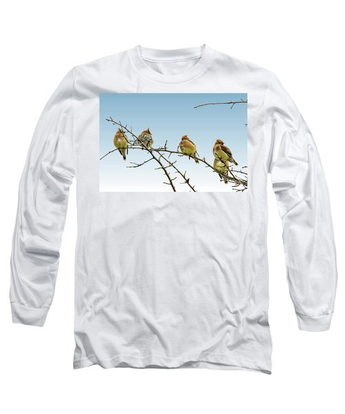 Cedar Waxwings Long Sleeve T-Shirt by Geraldine Scull