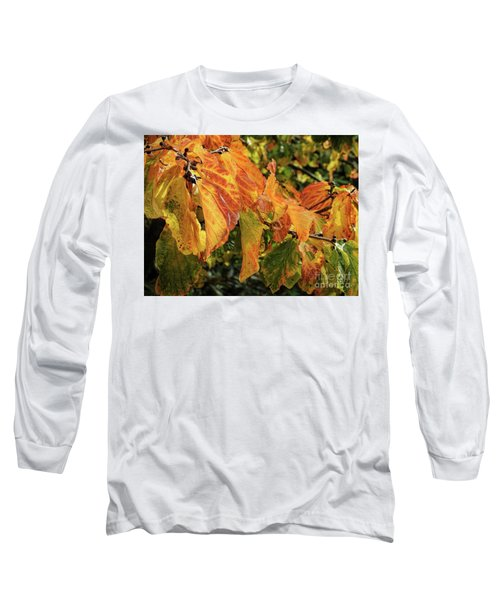 Long Sleeve T-Shirt featuring the photograph Changes by Peggy Hughes