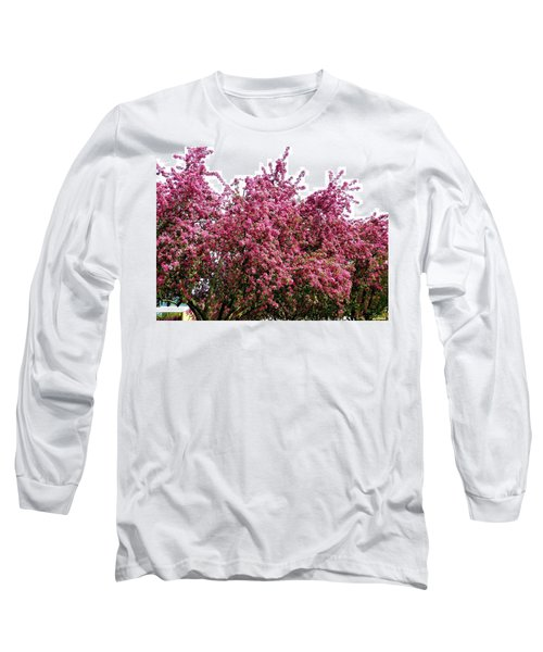 Cherry Blossoms 2 Long Sleeve T-Shirt by Will Borden