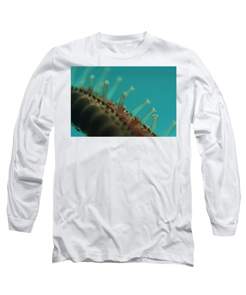 Chocolate Chip Starfish Long Sleeve T-Shirt