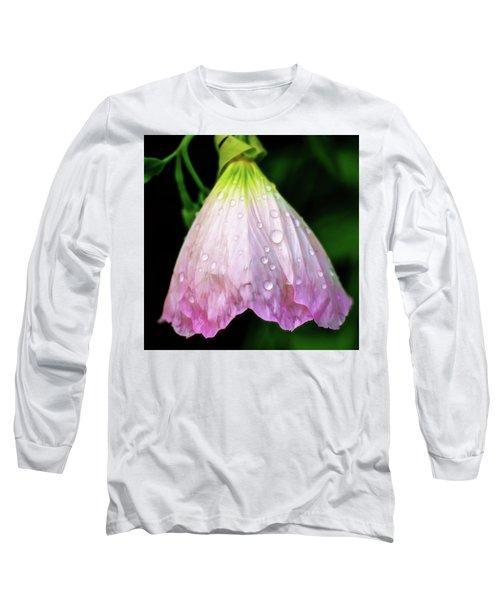 Cinderella's Dress Long Sleeve T-Shirt by Robert FERD Frank