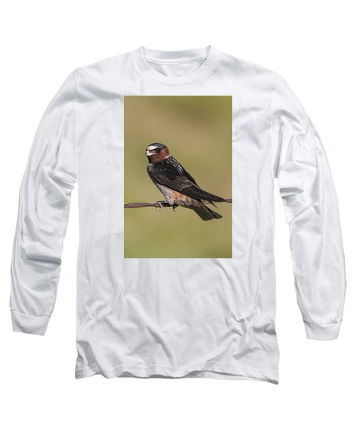 Long Sleeve T-Shirt featuring the photograph Cliff Swallow by Gary Lengyel
