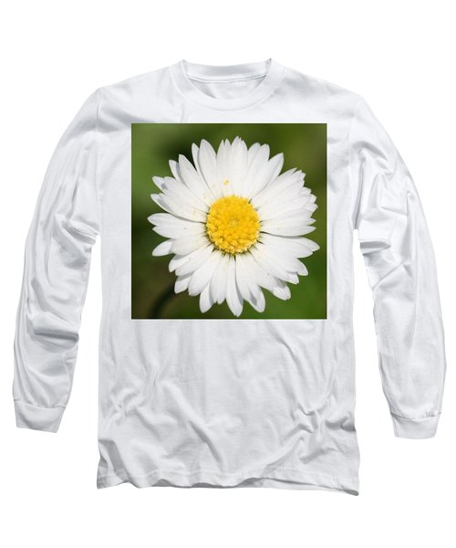 Closeup Of A Beautiful Yellow And White Daisy Flower Long Sleeve T-Shirt