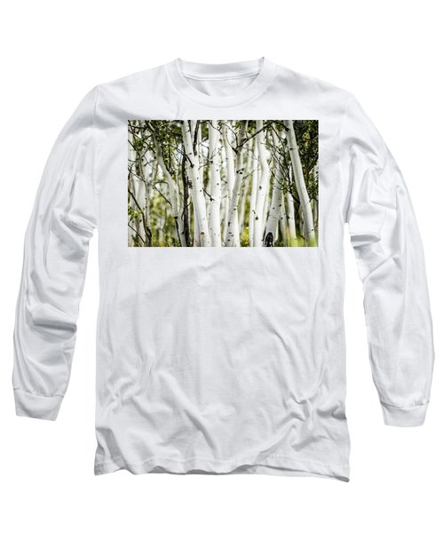 Long Sleeve T-Shirt featuring the photograph Colorado Aspens by Dawn Romine
