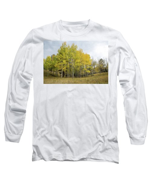 Colorado Aspens In Autumn Long Sleeve T-Shirt