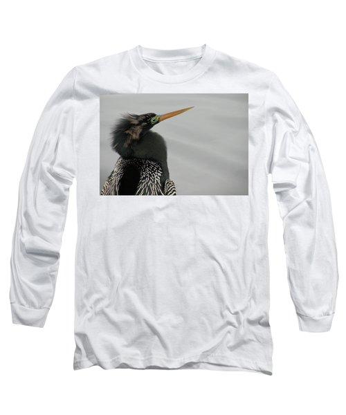 Colorful Anhinga Long Sleeve T-Shirt