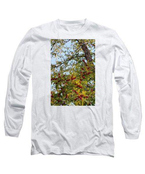 Colorful Contrasts Long Sleeve T-Shirt by Deborah  Crew-Johnson