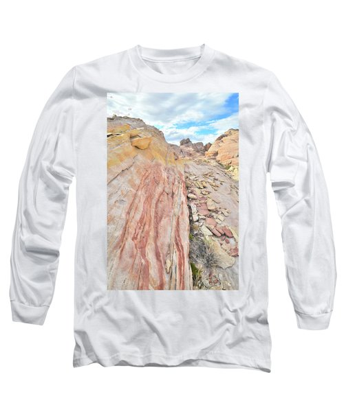 Colorful Crest In Valley Of Fire Long Sleeve T-Shirt by Ray Mathis