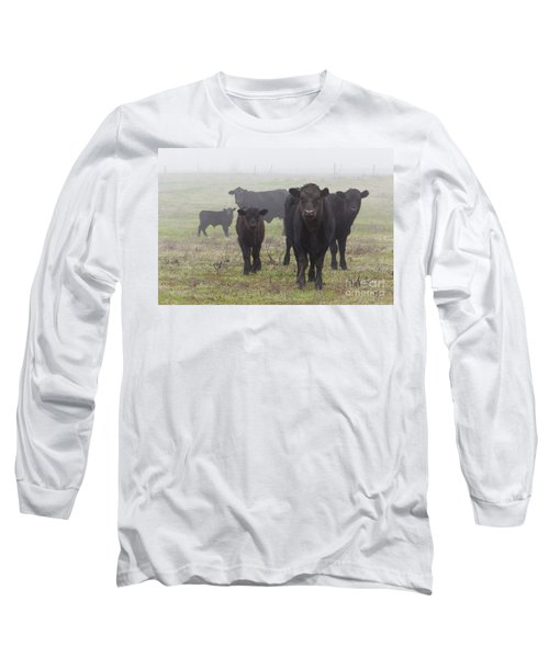 Cows Long Sleeve T-Shirt