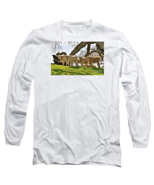 Cows Under Oak #2 Long Sleeve T-Shirt by Amy Fearn