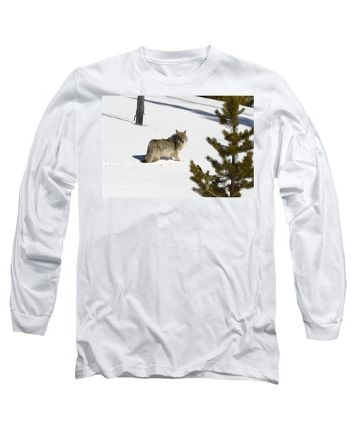 Coyote In Winter Long Sleeve T-Shirt