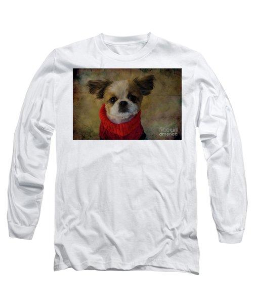 Cozy Sadie Long Sleeve T-Shirt by Al Bourassa