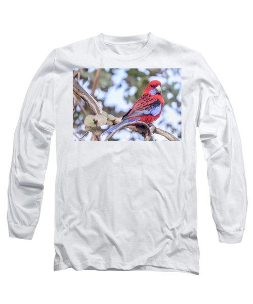 Crimson Rosella 03 Long Sleeve T-Shirt