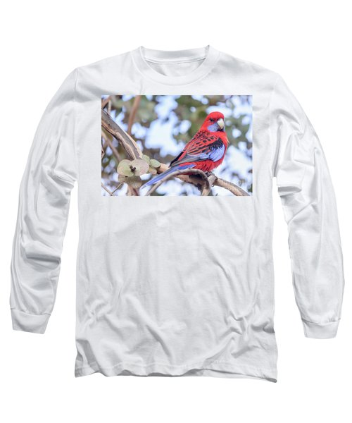 Crimson Rosella 03 Long Sleeve T-Shirt