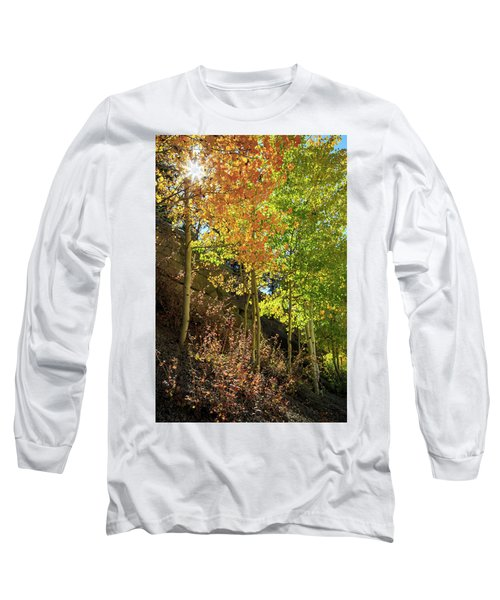 Crisp Long Sleeve T-Shirt by David Chandler