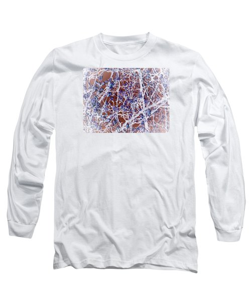 Long Sleeve T-Shirt featuring the photograph Crisp Ll by Robin Coaker