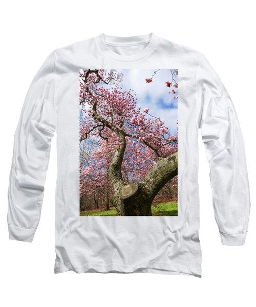 Crooked Magnolia Long Sleeve T-Shirt