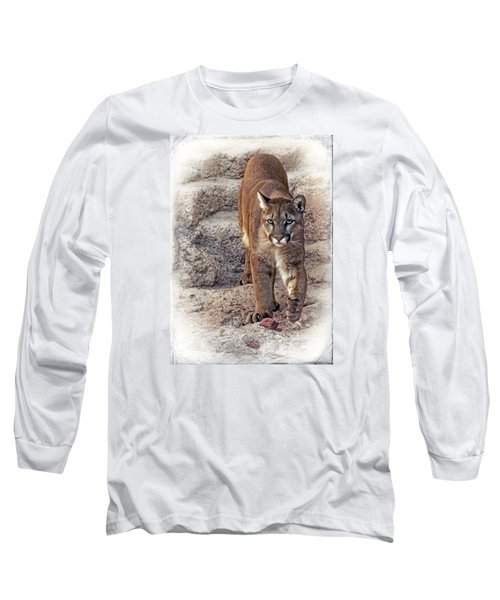Long Sleeve T-Shirt featuring the photograph Cruz Cruzin' by Elaine Malott