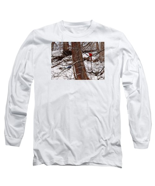 Curious Cardinal Long Sleeve T-Shirt
