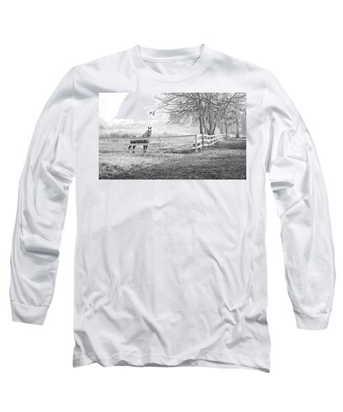 Curious Fog Long Sleeve T-Shirt