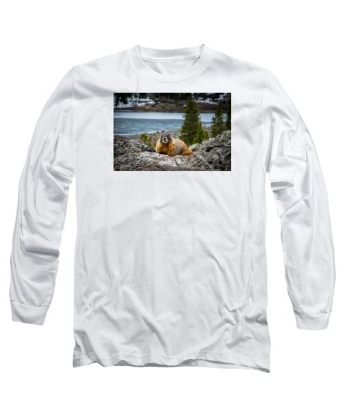 Curious Marmot Long Sleeve T-Shirt