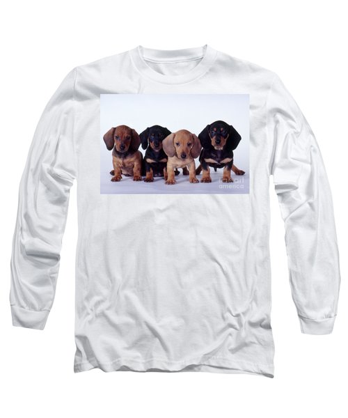 Dachshund Puppies  Long Sleeve T-Shirt