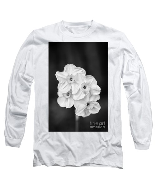 Daffodils With A Black Background Long Sleeve T-Shirt