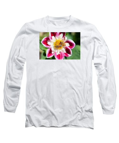 Dahlia Bee Buffet Long Sleeve T-Shirt