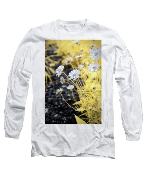 Daisey Long Sleeve T-Shirt by Paul Seymour