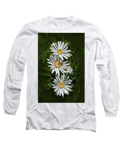 Long Sleeve T-Shirt featuring the photograph Daisy Chain by Marie Leslie