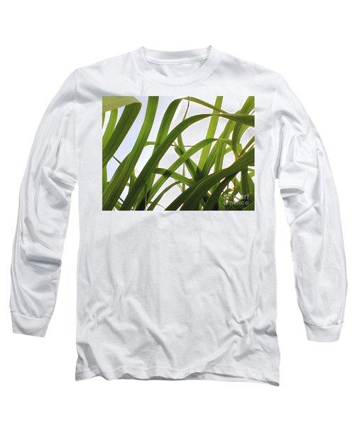 Dancing Bamboo Long Sleeve T-Shirt by Rebecca Harman