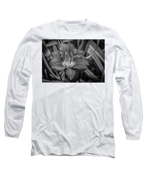Day Lilly Long Sleeve T-Shirt by Ray Congrove