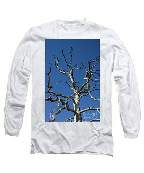 Dead Oak Tree Long Sleeve T-Shirt by Kennerth and Birgitta Kullman