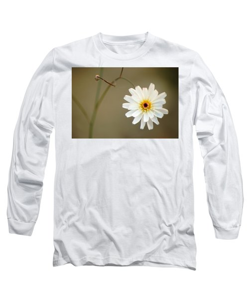 Long Sleeve T-Shirt featuring the photograph Death Valley Superbloom 104 by Daniel Woodrum