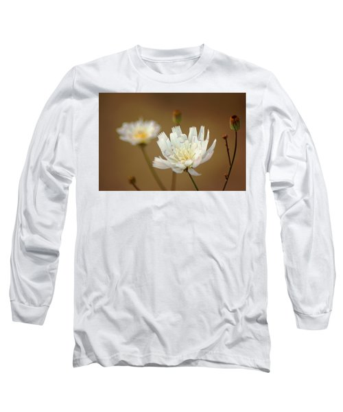 Long Sleeve T-Shirt featuring the photograph Death Valley Superbloom 303 by Daniel Woodrum