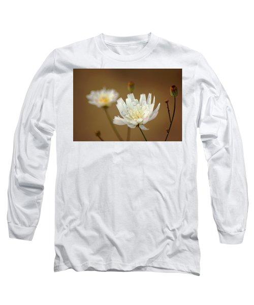 Death Valley Superbloom 303 Long Sleeve T-Shirt by Daniel Woodrum
