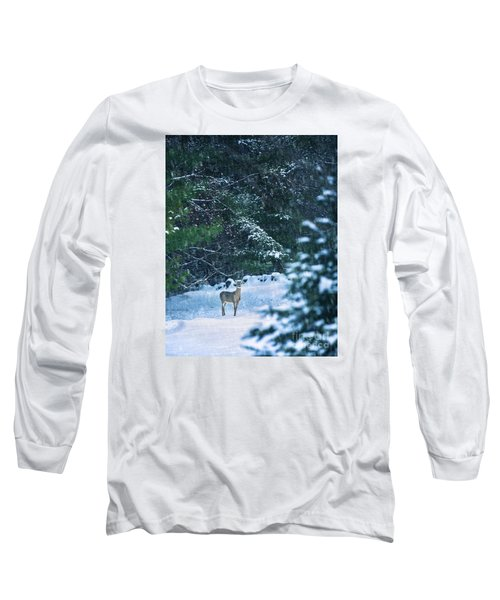 Deer In A Snowy Glade Long Sleeve T-Shirt by Diane Diederich