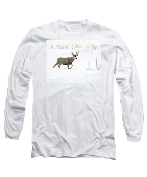 Long Sleeve T-Shirt featuring the photograph Deer In The Snow by Rebecca Margraf
