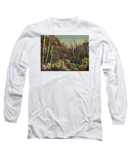 Desert Potpourri  Long Sleeve T-Shirt by James Larkin