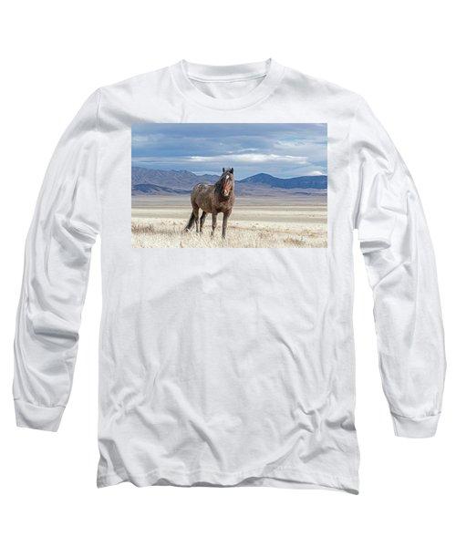 Long Sleeve T-Shirt featuring the photograph Desert Wild Horse by Scott Read