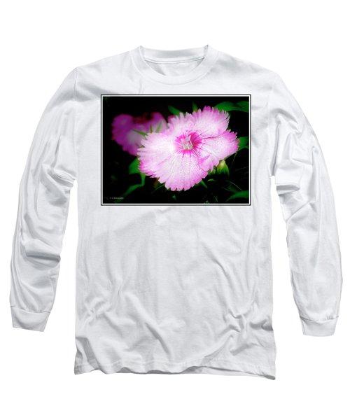 Dianthus Flower Long Sleeve T-Shirt