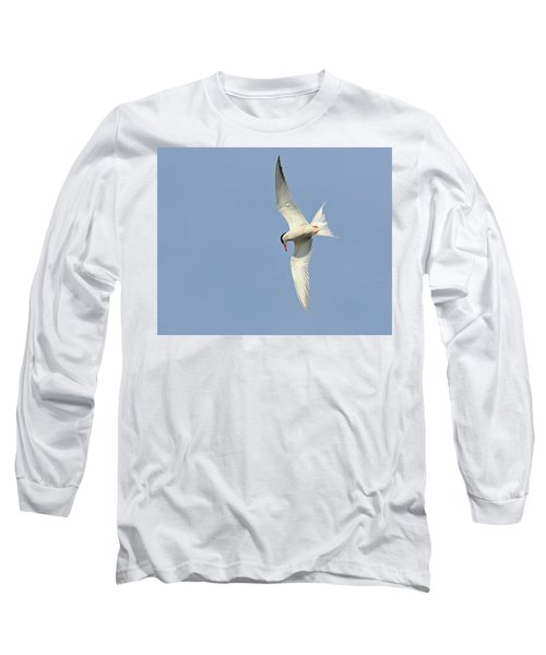 Long Sleeve T-Shirt featuring the photograph Dive by Tony Beck