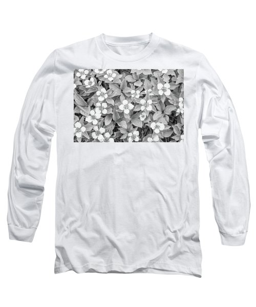Dogwood In The Rain Long Sleeve T-Shirt