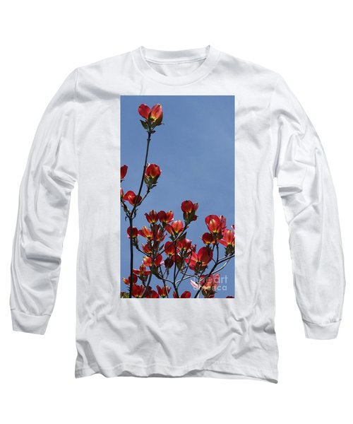 Long Sleeve T-Shirt featuring the photograph Dogwood by Victor K
